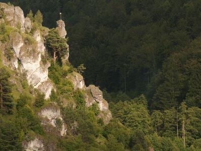 Felsnadel im Naturpark