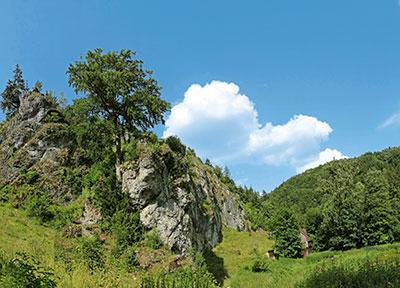 Naturpark Fränkische Schweiz-Veldensteiner Forst